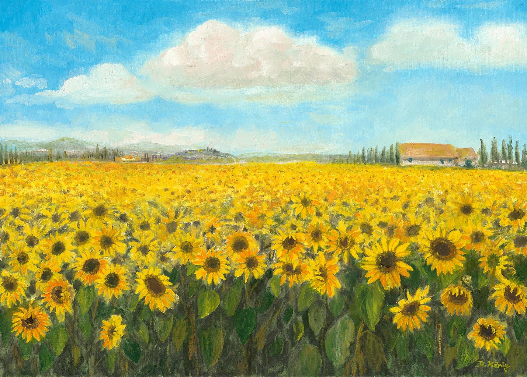 Sonnenblumen In Der Toskana - 50 X 70 Cm - Öl Auf Leinen